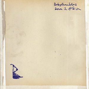Babyshambles : Down In Albion