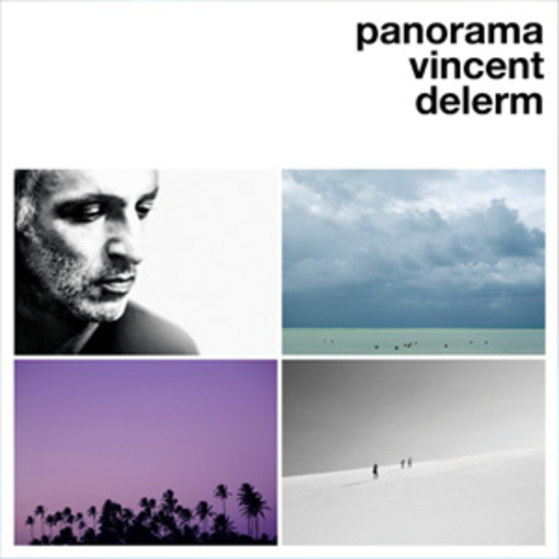 Vincent Delerm - Panorama